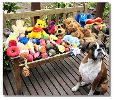 Austen at 6 years with all his toys